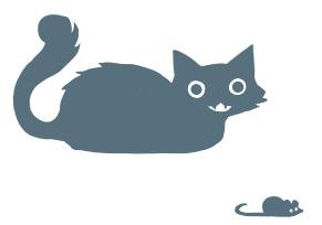kitten-standing